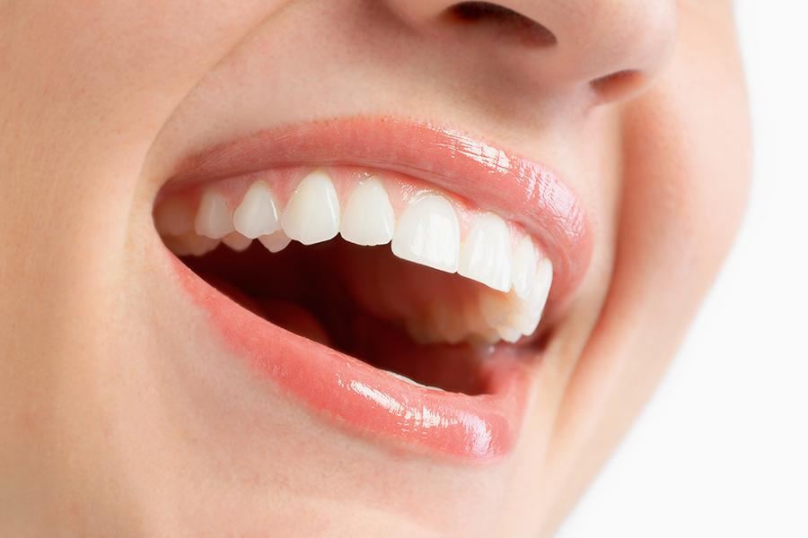 歯は性格を表す