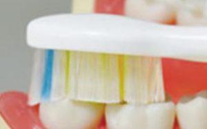 電動歯ブラシの歯への当て方